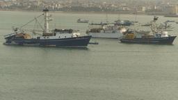 HD2009-11-13-40 tuna boats in harbor Stock Video Footage