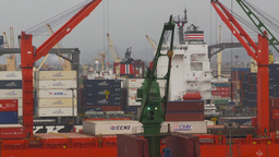 HD2009-11-14-24 containor ships many Stock Video Footage