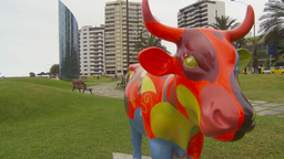 HD2009-11-15-13 crazy cow Stock Video Footage