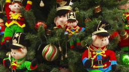 HD2009-11-15-17 Xmas tree Footage