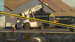 HD2009-11-18-65 containor port crane Stock Video Footage