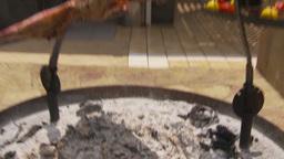 HD2009-11-24-9 big BBQ lamb 2 shot Footage