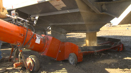 HD2009-10-6-37 grain truck mustard seed into auger Stock Video Footage