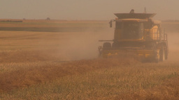 HD2009-9-32-10 grain harvest combines Stock Video Footage