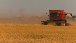 HD2009-9-32-12 grain harvest combines Stock Video Footage