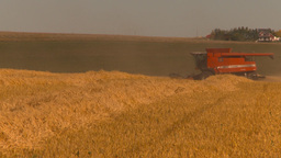 HD2009-9-32-14 grain harvest combine Footage