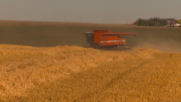 HD2009-9-32-14 grain harvest combine Stock Video Footage