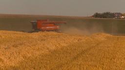 HD2009-9-32-14 grain harvest combine Stock Video Footage