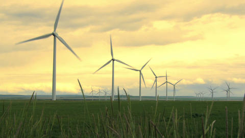 Wind Farm 01 Footage