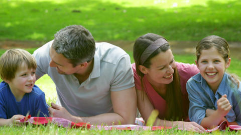 Cute Family Lying On A Blanket In The Park stock footage
