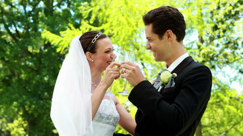 Happy newlyweds drinking champagne in the countrys Footage