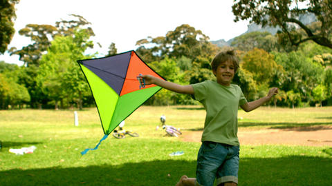 Little boy playing with a kite in the park Footage