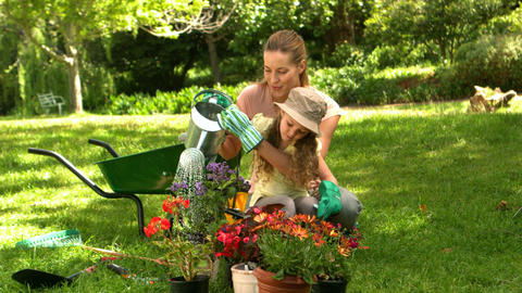 Little girl gardening with her mother Live Action