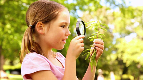 Little girl looking at plant through magnifying gl Footage