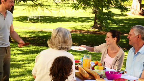 Happy family having a barbecue in the park togethe Footage