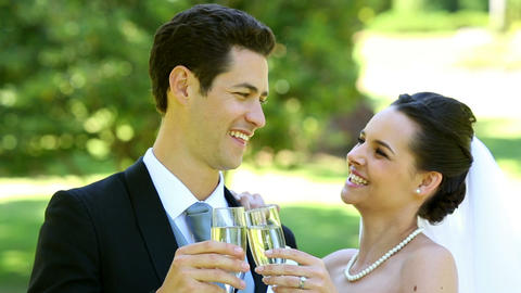 Happy newlyweds toasting with champagne Footage