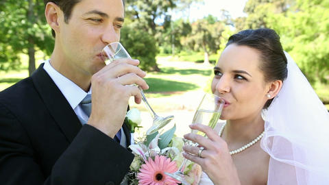 Happy newlyweds toasting with champagne by the wed Footage