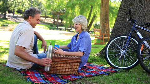Happy couple having a picnic in the park Footage