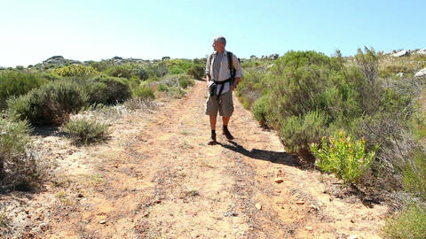 Man hiking in nature on wild trail Footage
