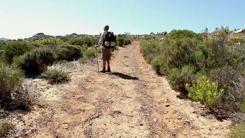 Man hiking through a wild terrain Footage
