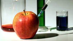 Syringe injecting chemical into an apple Footage