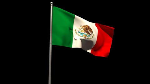 Mexico national flag waving on flagpole Animation