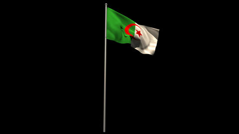 Algeria national flag waving on flagpole Animation