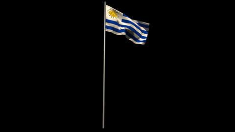 Uruguay national flag waving on flagpole Animation
