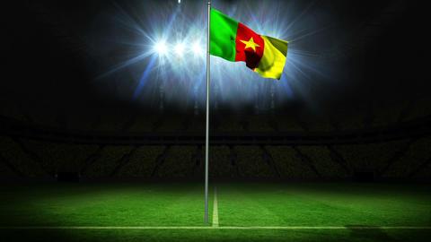 Cameroon national flag waving on flagpole Animation