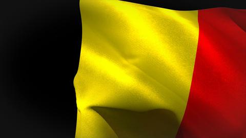 Digitally generated belgium flag waving Animation