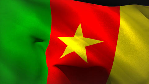 Digitally generated cameroon flag waving Animation