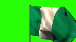 Nigeria national flag waving on flagpole Animation