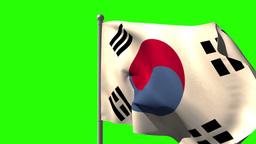 Korea republic national flag waving on flagpole Animation