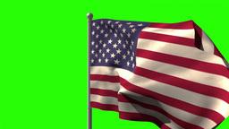 USA national flag waving on flagpole Animation