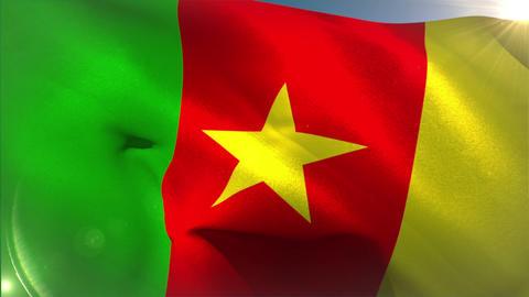 Large cameroon national flag waving Animation
