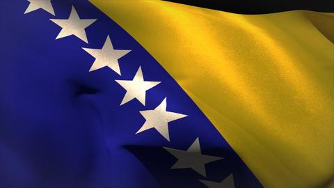 Large bosnian national flag waving Animation