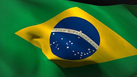 Large brazil national flag waving Animation