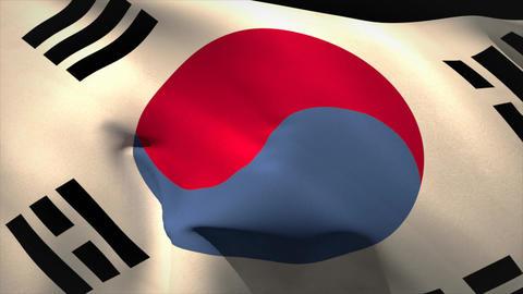 Large korea republic national flag waving Animation