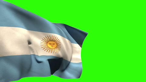 Large argentina national flag blowing Animation