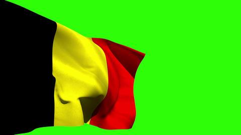 Large belgium national flag blowing Animation
