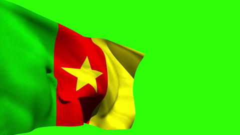 Large cameroon national flag blowing Animation