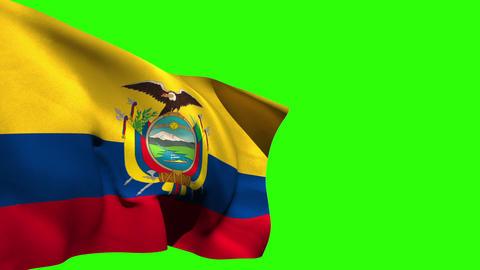 Large ecuador national flag blowing Animation