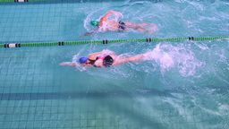 Fit swimmers racing in the pool Footage