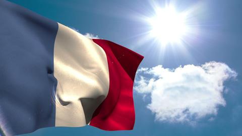 France national flag waving Animation