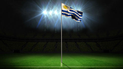 Uruguay national flag waving on flagpole Animation