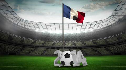 France national flag waving on flagpole with 2014  Animation