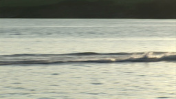 Water Skiing Footage