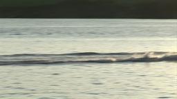 Water Skiing Footage