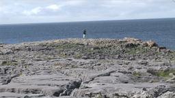 A Barren Landscape stock footage