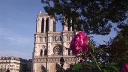 Gargoyle on Notre Dame Footage